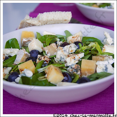 Saladefromage2