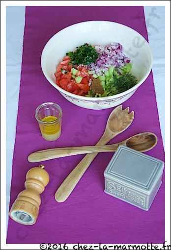 Saladebaladi1